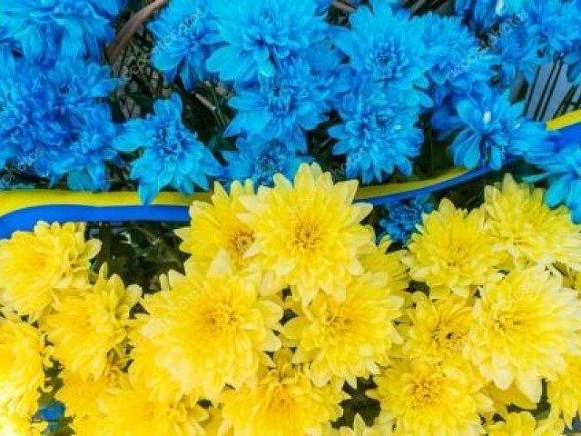 До Дня пам'ятізахисників України, які загинули в боротьбі за незалежність, суверенітет і територіальну цілісність України